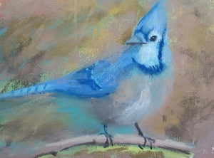 BlueJay pastel on Paper 6 by 8 in.