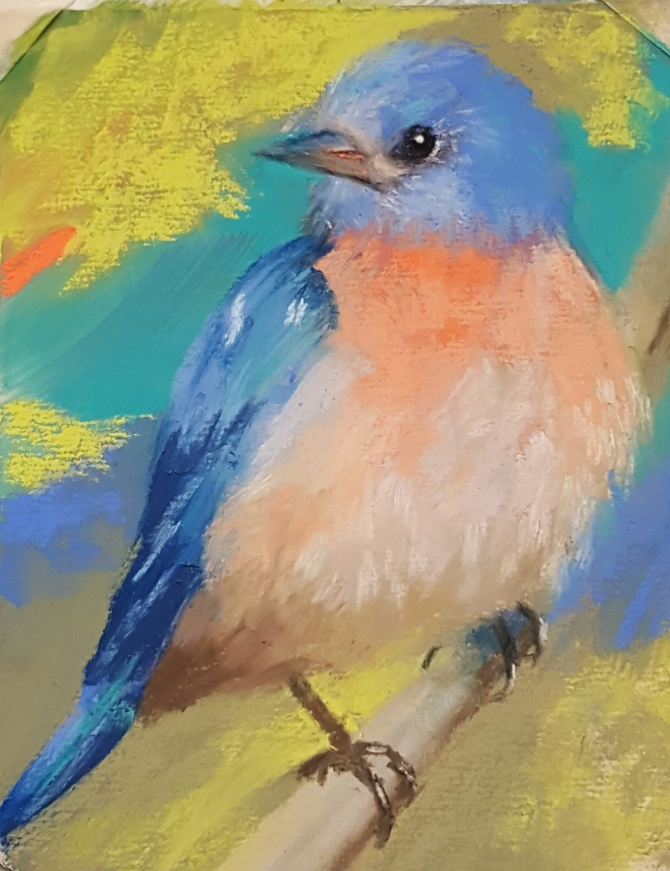 Blue Bird Pastel on Paper 6 by 8 in - Sold